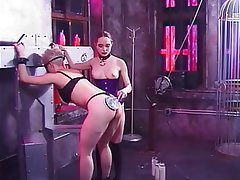Brunette, Lesbian, Big Boobs, Group Sex, BDSM